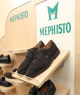 メフィストジャパン(MEPHISTO)様 システム導入事例